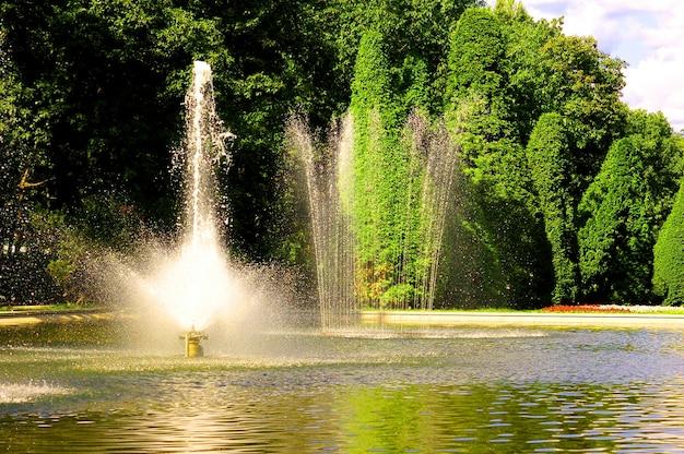 Belle fontaine avec des arbres à feuilles fond