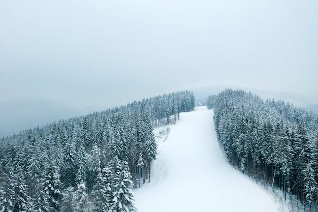 Belle forêt d'hiver et la route