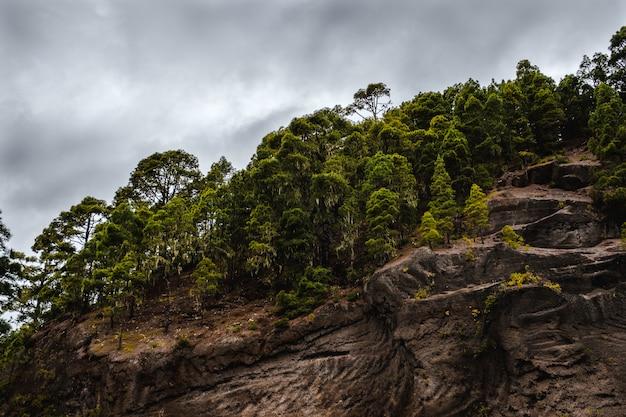 Belle formation rocheuse avec une forêt de pins haute par temps nuageux