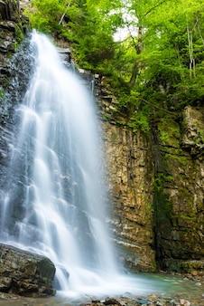 Belle haute cascade dans la forêt verte