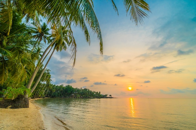 Belle île paradisiaque avec plage et mer autour du cocotier
