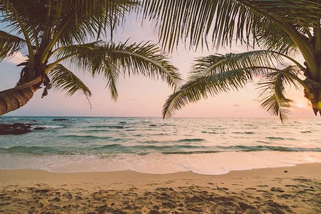 Belle île paradisiaque avec plage et mer