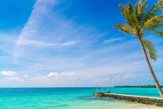 Belle île tropicale des maldives, plage de sable blanc et mer avec des palmiers autour