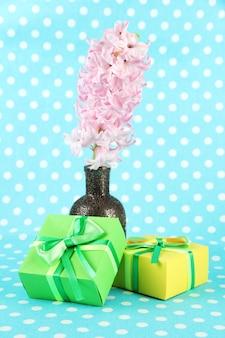 Belle jacinthe en vase et beaux cadeaux, sur couleur