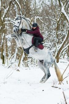 Belle jeune femme avec un cheval sur la nature en hiver sur la neige