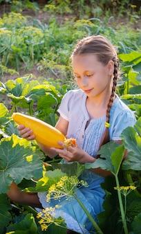 Belle jeune fille avec zuccini jaune frais dans le jardin