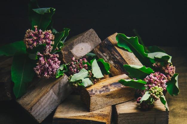 La belle lilas sur un fond en bois
