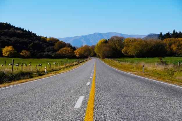 Belle longue route vers la montagne en nouvelle-zélande