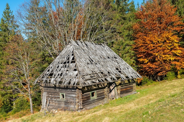 Belle maison en bois pendant la haute saison d'automne dans les montagnes