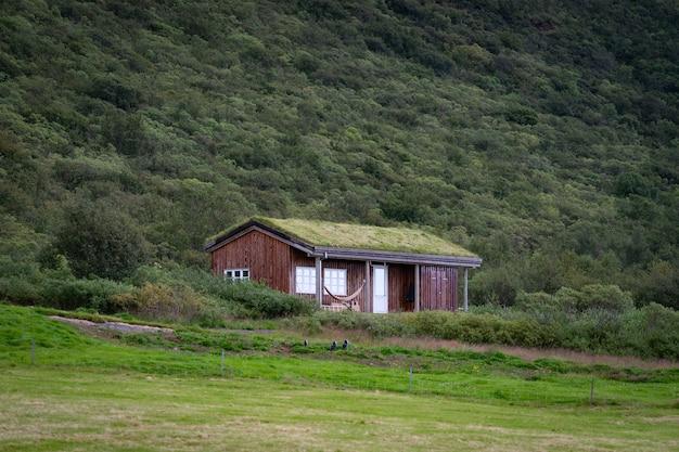 Belle maison islandaise avec toit de gazon et herbe verte.
