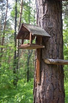 Belle mangeoire à oiseaux dans le parc. maison en bois pour oiseaux sur un arbre