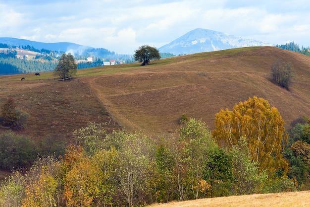 Belle montagne d'automne et petit village à flanc de montagne (carpates. ukraine)