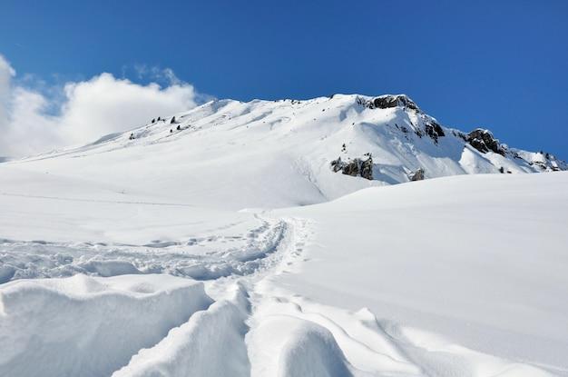 Belle montagne enneigée