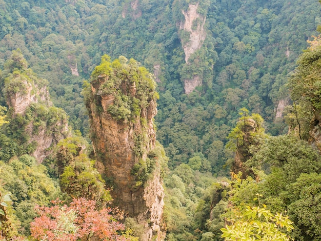 Belle montagne de montagne yuanjiajie ou avartar au parc forestier national de zhangjiajie
