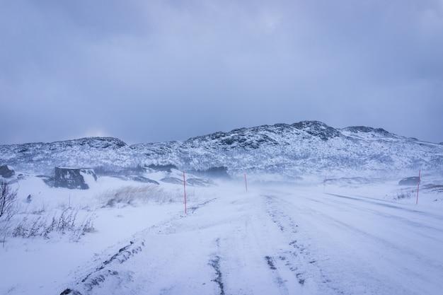 Belle nature intacte dans le nord de la scandinavie