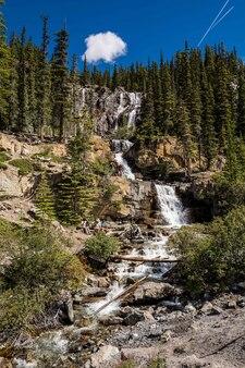 Belle petite cascade en cascade. cascades de tangle creek dans le parc national jasper, alberta, canada