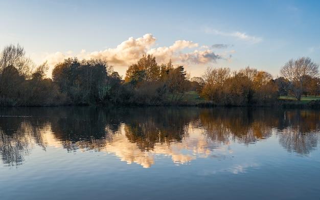 Une belle photo d'arbres se reflétant sur l'eau