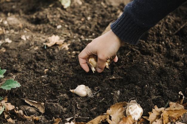 Belle photo d'une femme faisant un jardinage