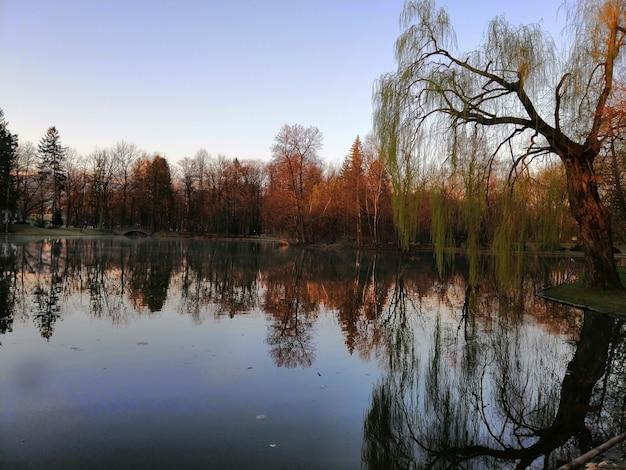 Belle photo d'un lac au milieu d'une forêt à jelenia góra, pologne.