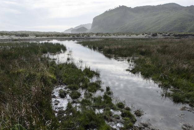 Belle photo d'un marais avec une montagne derrière