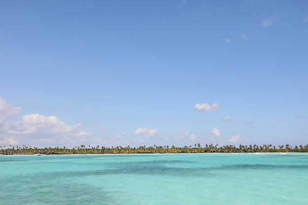 Belle photo de la mer paisible entourée d'arbres verts sous un ciel bleu clair