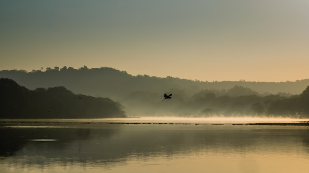 Belle photo d'un oiseau volant au-dessus de l'eau du lac entouré de montagnes et d'arbres