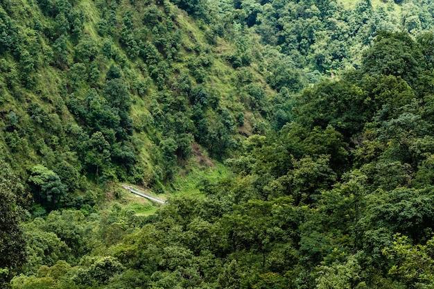 Belle photo de paysage de montagnes couvertes de jungle et pont suspendu pour piétons. concept d'activité de trekking et de randonnée. stock photo.