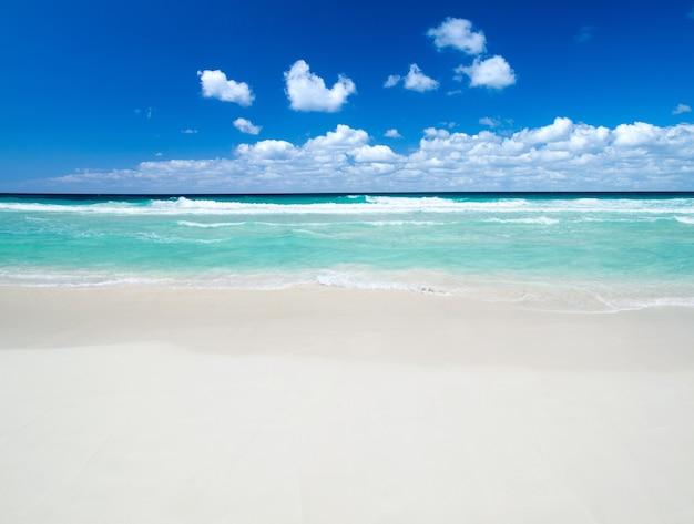 Belle plage bleue de la mer des caraïbes
