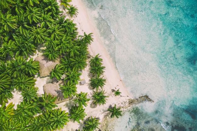 Belle plage des caraïbes sur l'île de saona, république dominicaine. vue aérienne du paysage d'été idyllique tropical avec palmiers verts, côte de la mer et sable blanc