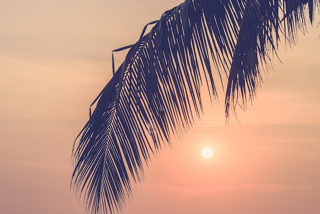 Belle plage de la lumière du soleil ciel