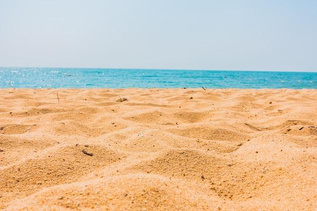 Belle plage et mer avec palmier
