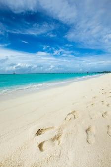 Belle plage et mer tropicale. paysage de voyage