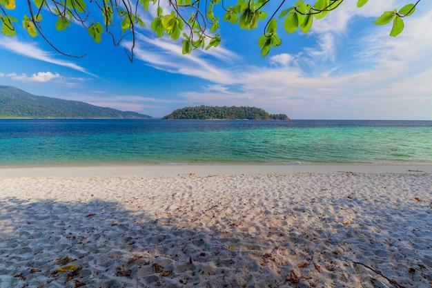 Belle plage de sable blanc avec arbre en mer tropicale dans l'île de lipe en thaïlande