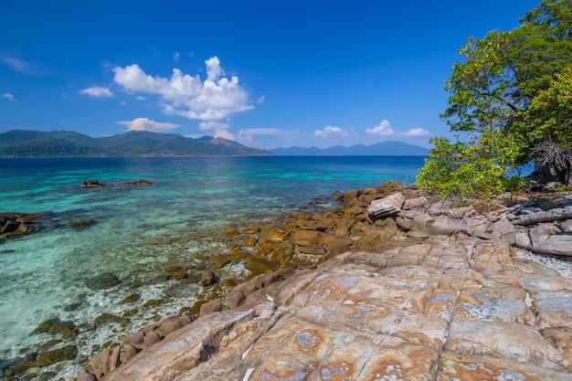 Belle plage de sable blanc avec des arbres en mer tropicale dans l'île de lipe en thaïlande
