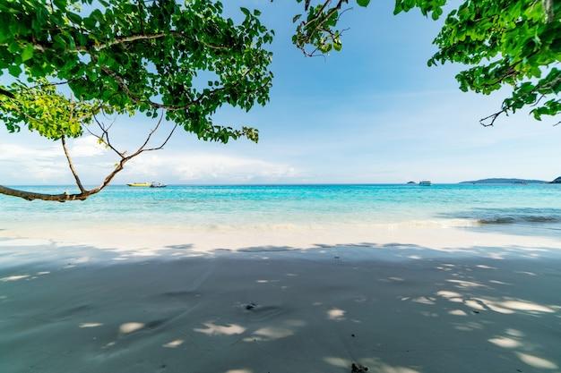Belle plage de sable avec vague s'écrasant sur le rivage sablonneux aux îles similan belle mer tropicale île similan n°4 au parc national similan, phang nga thaïlande.