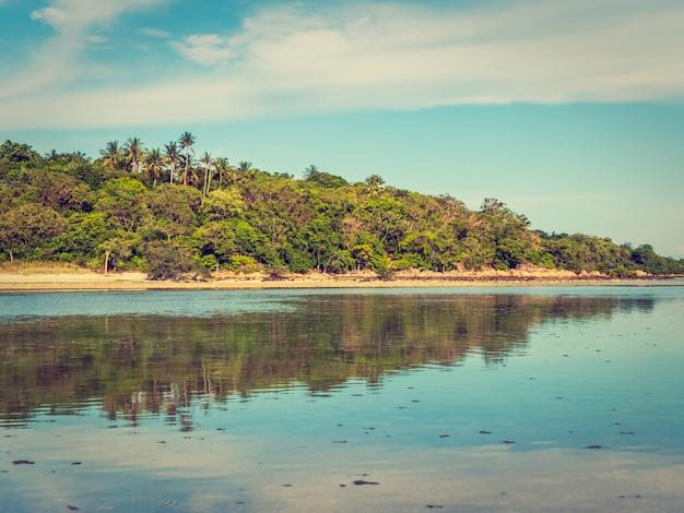 Belle plage tropicale et mer avec cocotier