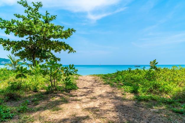 Belle plage tropicale et la mer dans l'île paradisiaque