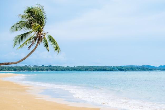 Belle plage.