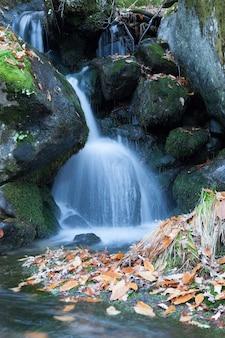 Belle rivière et gros rochers avec de la mousse