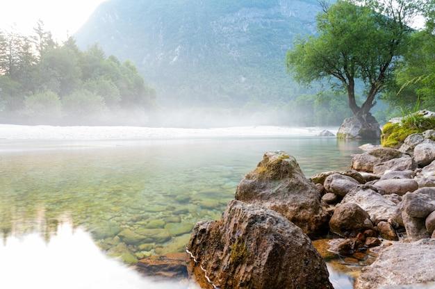 Belle rivière soca avec de la brume au-dessus et un arbre fort poussant hors d'un rocher sur le rivage.