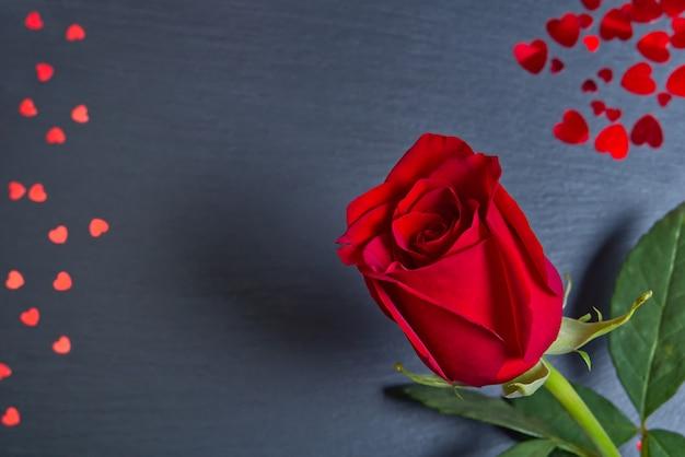 Belle rose unique sur fond gris foncé avec des coeurs. le concept de la saint-valentin, fête des mères, 8 mars.