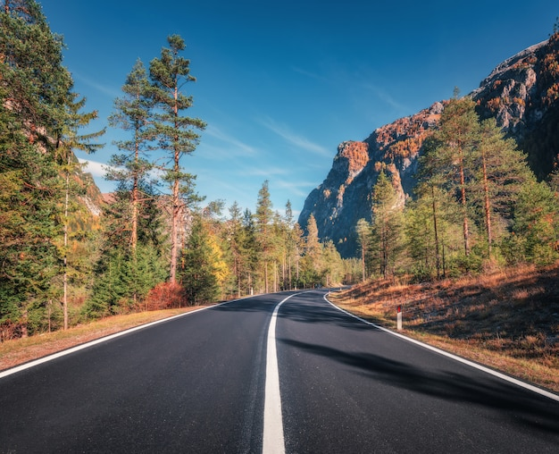 Belle route de montagne dans la forêt d'automne au coucher du soleil