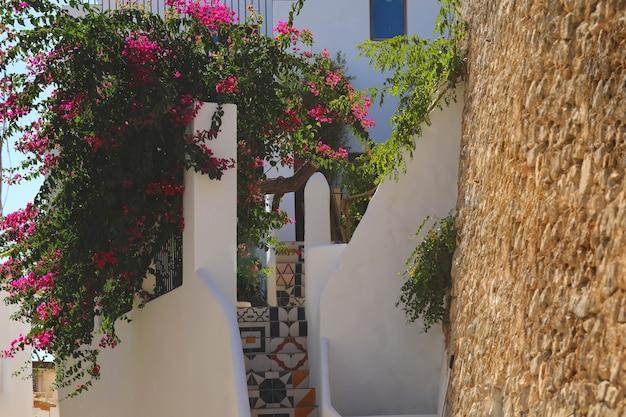 Belle rue et bougainvilliers colorés dans la vieille ville d'ibiza