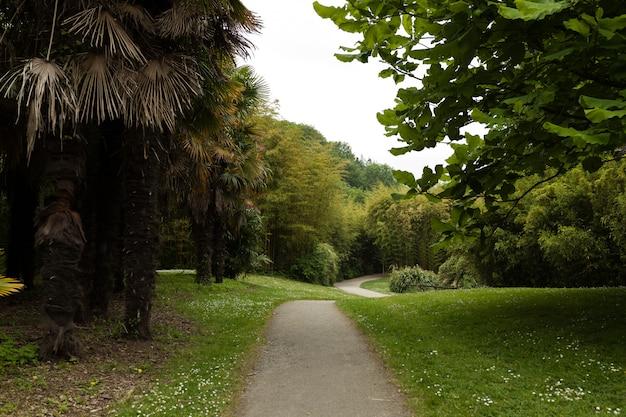 Belle ruelle dans parc