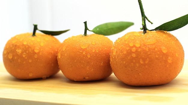 Belle séance photo orange fraîche