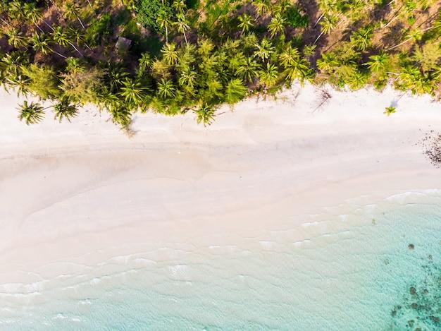 Belle vue aérienne de la plage et de la mer avec un cocotier