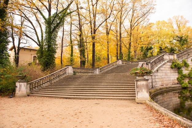 Belle vue sur la forêt en automne