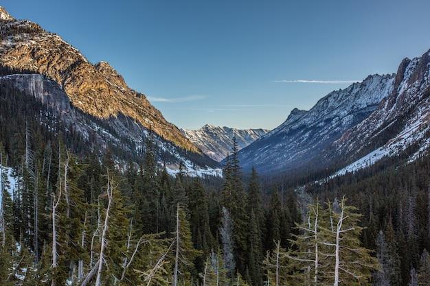Belle vue sur les hautes montagnes rocheuses et enneigées et les collines avec une forêt