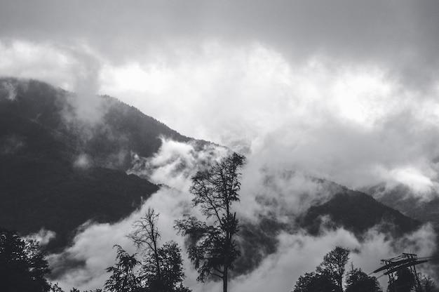 Belle vue à krasnaya polyana