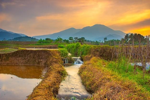 Belle vue matinale avec le soleil qui brille de superbes couleurs dans les rizières